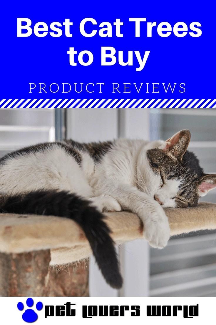 Best Cat Trees Reviews