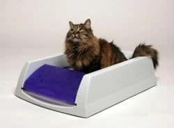 PetSafe ScoopFree Self Cleaning Litter Box2