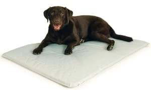 K&H Cool Bed III – Cooling Dog Bed