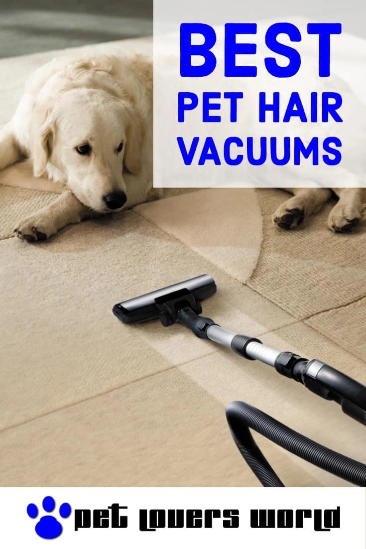 Best Vacuum Cleaner For Pet Hair Reviews Pinterest Image