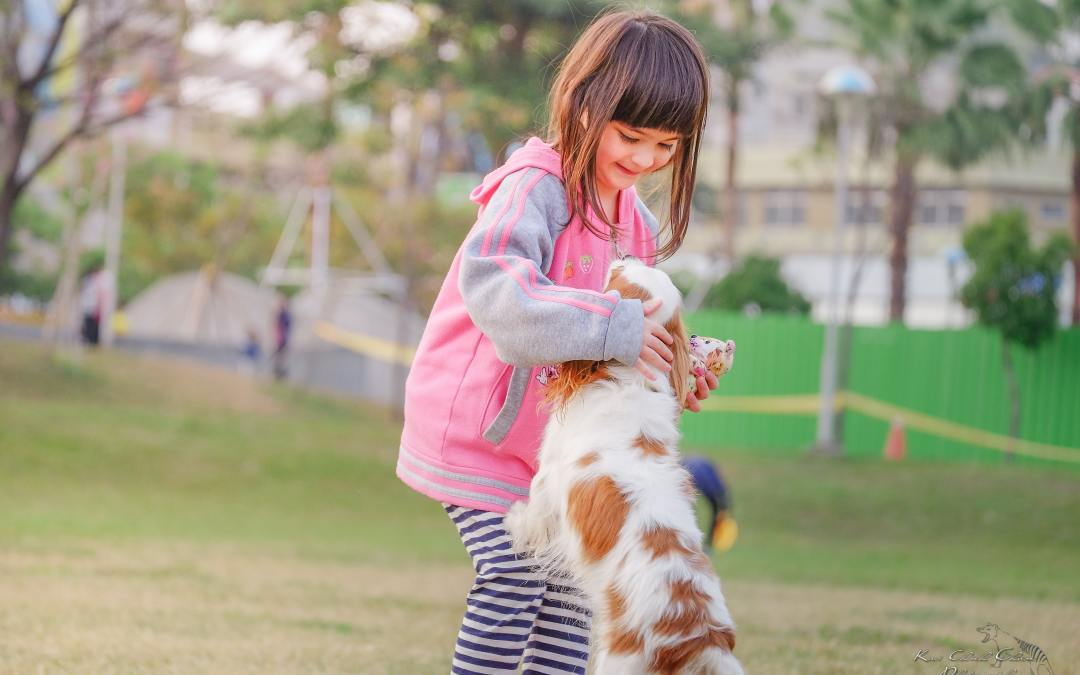 Smart Parent Advice for Getting a Family Pet