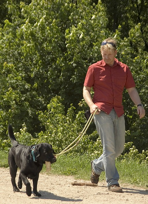 By being on the defensive, you can avoid confrontations when you walk your dog