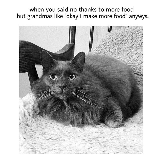 grandma-make-more-food-fat-memes