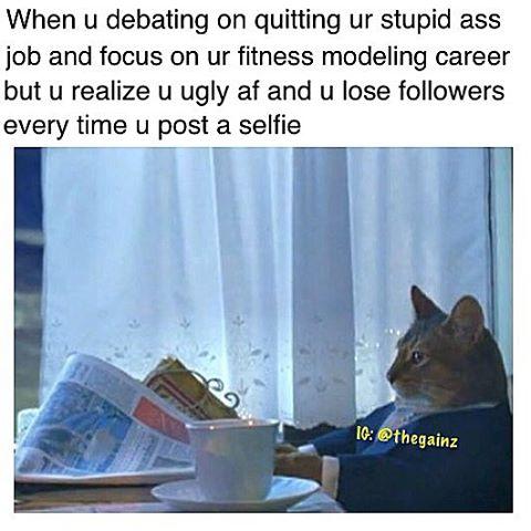quit-job-focus-modelling-career-ugly-af-memes