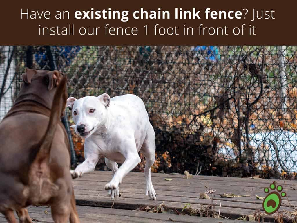 chain-link-fence