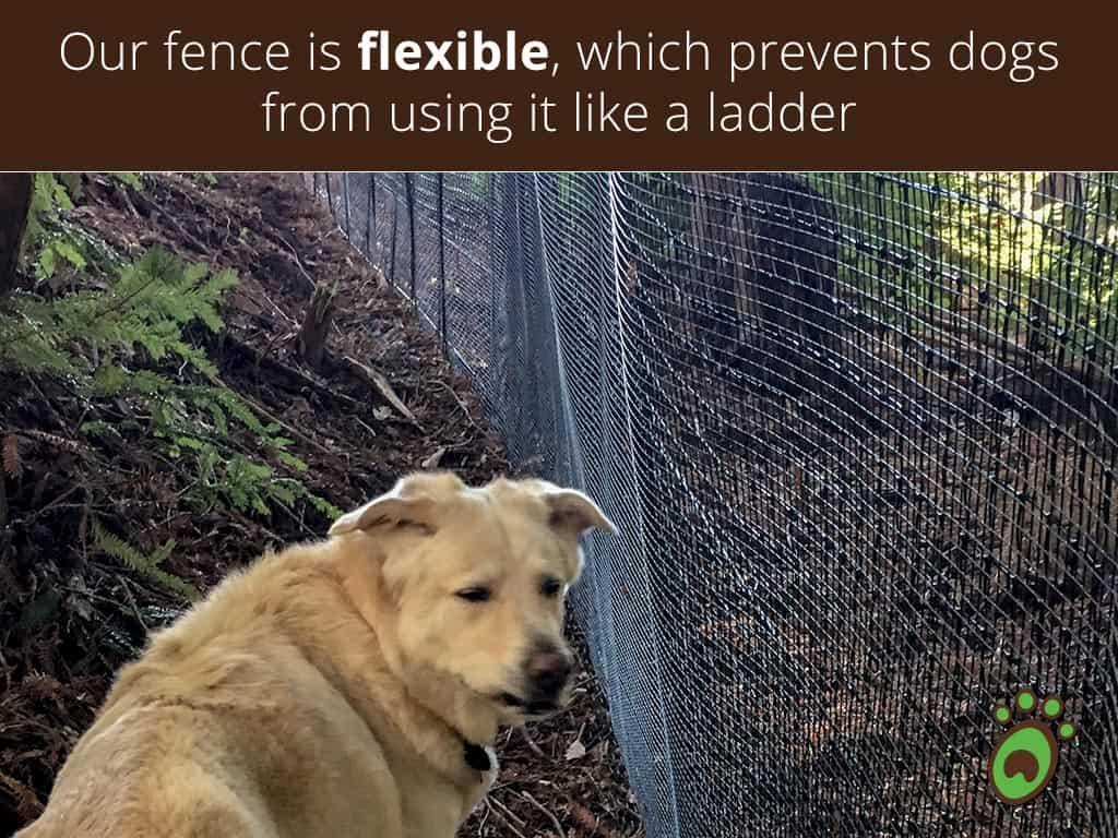flexible-max-strength