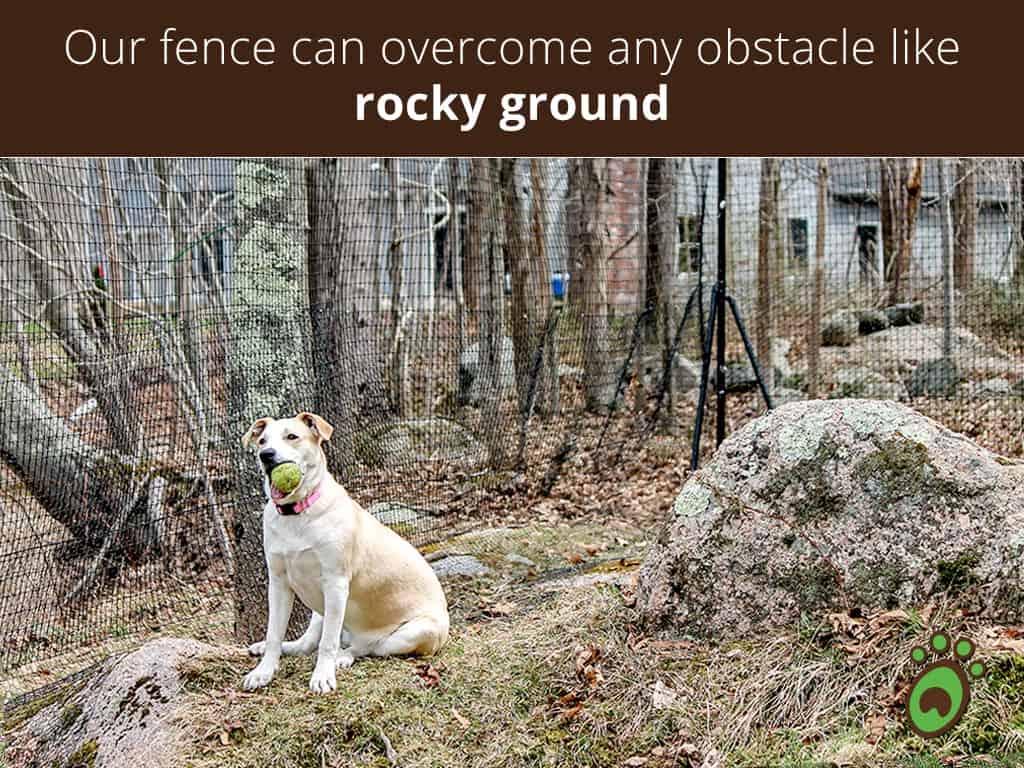 rocky-ground