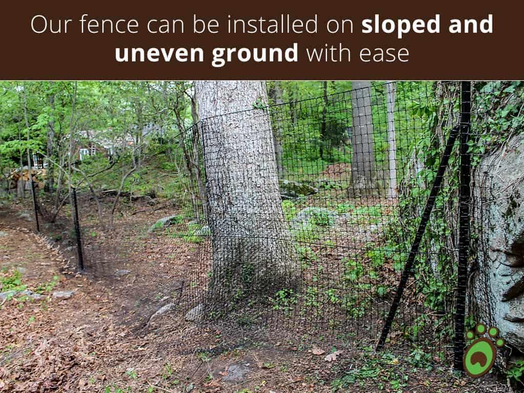 sloped-tree-posts