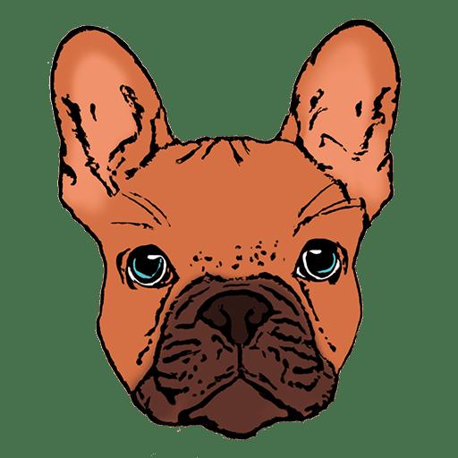 essai logo app