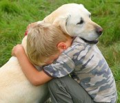 Coping with Pet Loss During the Holidays