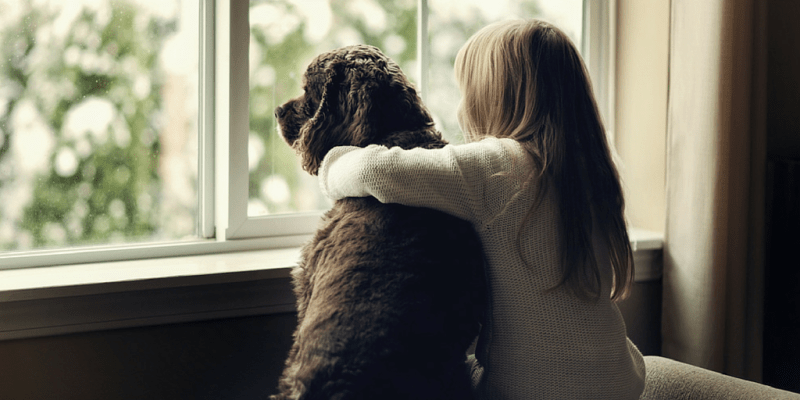Girl-and-Her-Dog-Looking-Out-Window