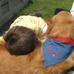 Podcast-Teaching Safe Child/Dog Interaction to Parents