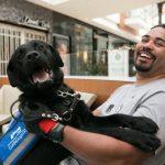 How a Service Dog Saved a Marriage