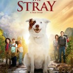 Podcast: The Movie-The Stray