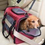 The New Gen7 Commuter™ Pet Carrier + Car Seat is Crash-Tested and Pet Approved!