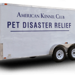AKC REUNITE EARMARKS AN ADDITIONAL $200,000  FOR PET DISASTER RELIEF