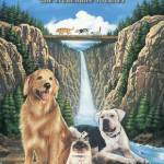 Beat the at home blues with all the best dog movies in one place