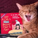 Book review- Why a Cat is still better than a man!