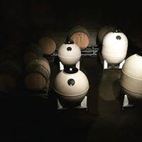 DK cellar w barrels