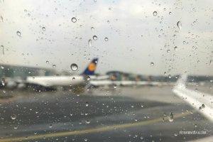 petranovskaja geduld regen