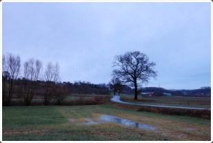 24-Januar etwas regnerisch, aber milder!