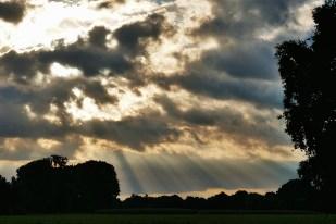 8-August Hunderunde.. sehr viele Wolken