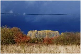 3-November vor dem Regen