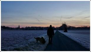 4-Dezember große Hunderunde, sehr kalt!
