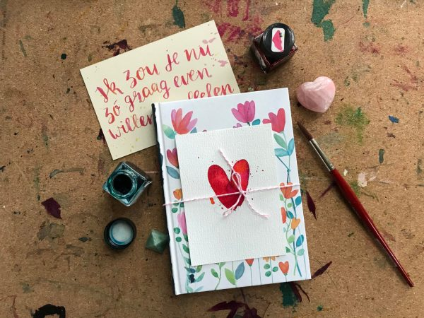 Van dromen naar doen boek met illustratie