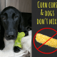 dozer-and-corn-cob