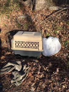 deceased dogs in Memphis
