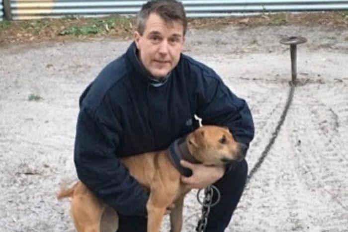 Dog Fighting Rescue Australia