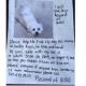 Blind dog stolen with car