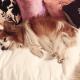 Christina Aguilera says good-bye to her dog