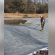 Clever dog saved from icy pond