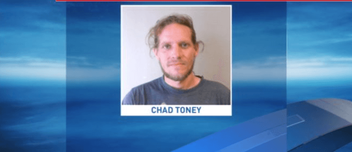 Man wanted in cat torture case