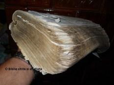 Mama Banesti - o Biblie citita.. (2)