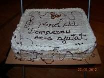 Tort si pizza (6)
