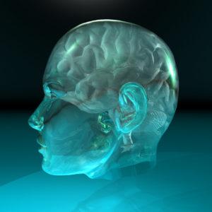 brain_glowingprofile