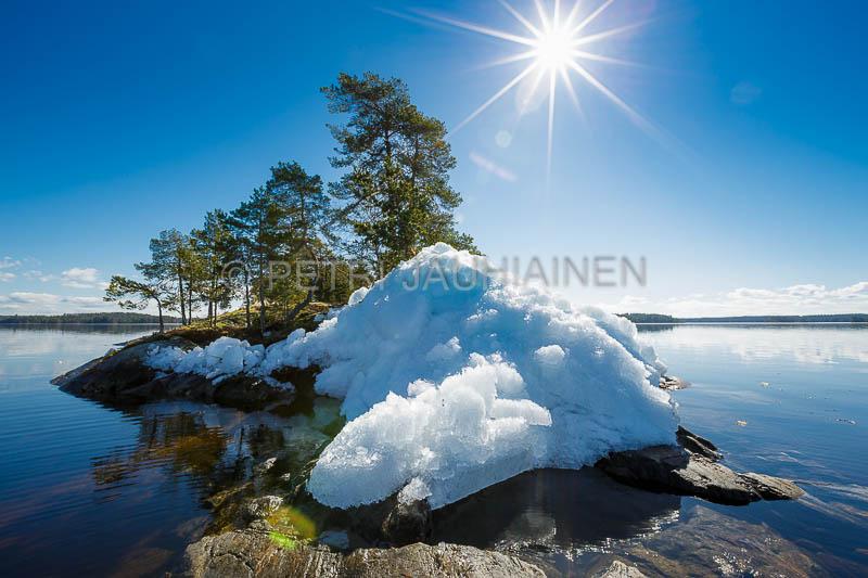 Luonto valokuvaaja Petri Jauhiainen