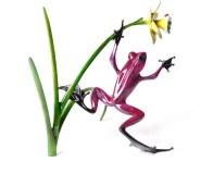 "Daffodil, Medium: Bronze Release: 2012 Edition: 2000 AP/100 Catalog: BF160 Size: 13"" x 9"" x 10"" Artist: Frogman"