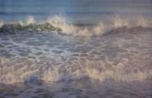 "Lacy-Majesty, Medium: Oil on Canvas Canvas Size: 24"" x 36"" Framed Size: 30.75"" x 43"" Artist: Tom Nielsen"