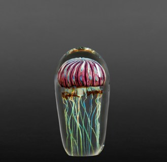 Satava-Purple-Ribbed-Jellyfish-Small