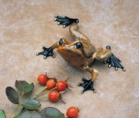 "Toady, Medium: Bronze Catalog: BF54 Size: 6.25"" x 5"" x 3"" Artist: Frogman"