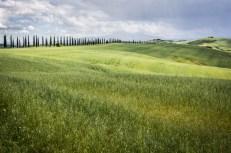 Itálie, Toskánsko