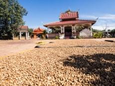 Laos, Bolavenská planina