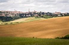 Zpět v Sieně