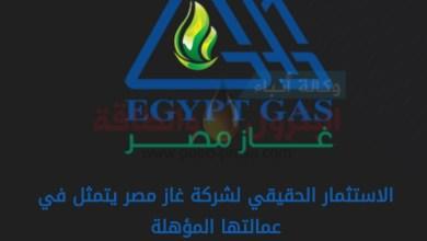 Photo of أرقام وعناوين خدمة عملاء شركة غاز مصر فى محافظة الاسكندرية