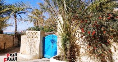 Photo of مصر للسياحة: دخول الفيوم ضمن المقاصد السياحية يدعم القطاع