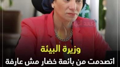 صورة وزيرة البيئة:اتصدمت من بائعة خضار مش عارفه معنى التنمية المستدامة